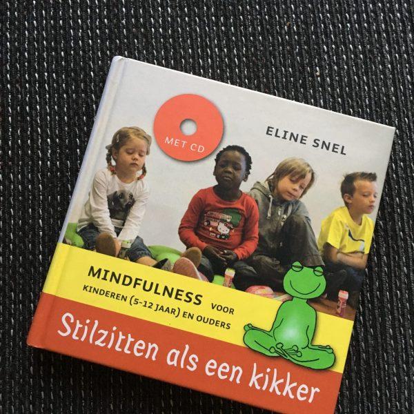 Boekcover: Stilzitten als een kikker